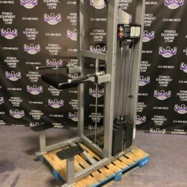 Life Fitness Pro 2 Assisted & Free Weight Dip & Pull-up Machine